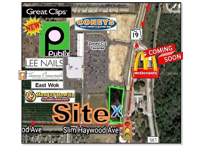 STATE ROAD 19 & SLIM HAYWOOD AVENUE, TAVARES, FL 32778