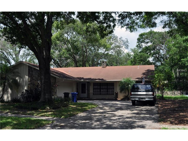 17505 MEADOWBRIDGE DRIVE, LUTZ, FL 33549