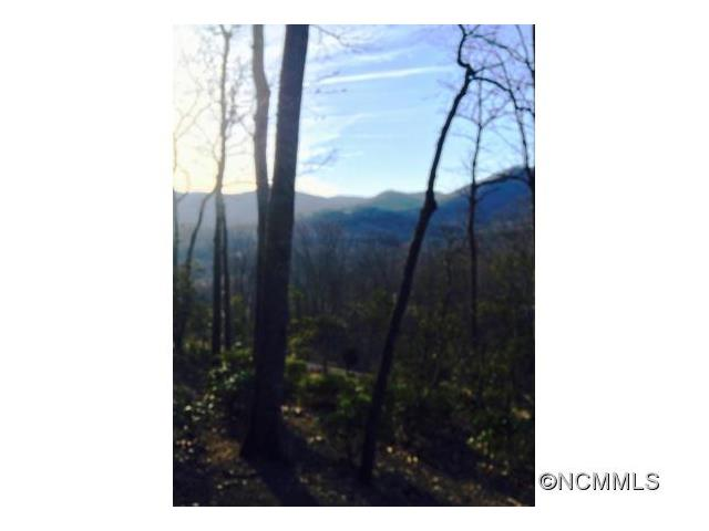 7 Wood Lily Trail 7-22, Arden, NC 28704
