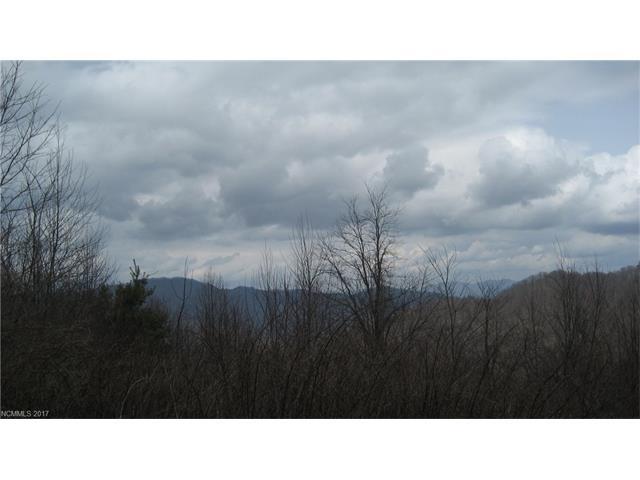 13 White Tail Trail 13, Marshall, NC 28753
