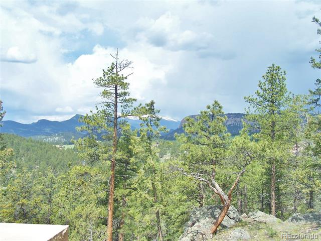 14725 Wetterhorn Peak Trail, Pine, CO 80470