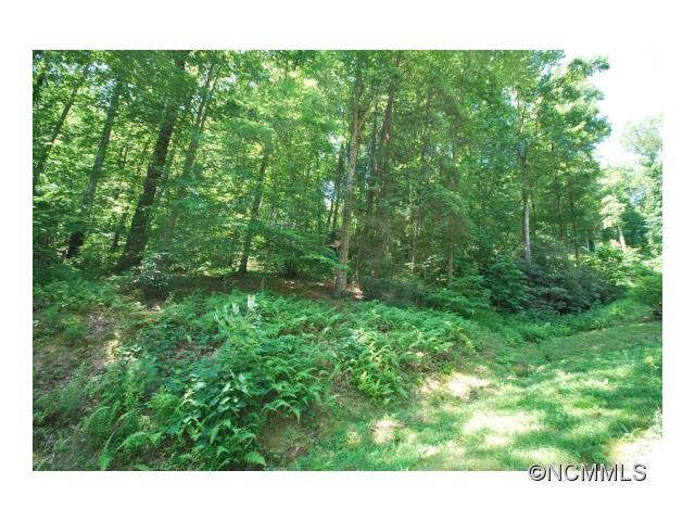 8 Poplar Crest Drive 8, Pisgah Forest, NC 28768