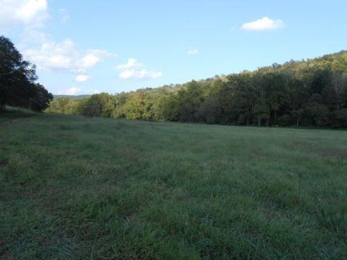 17695 Highway 167, Monticello, KY 42633