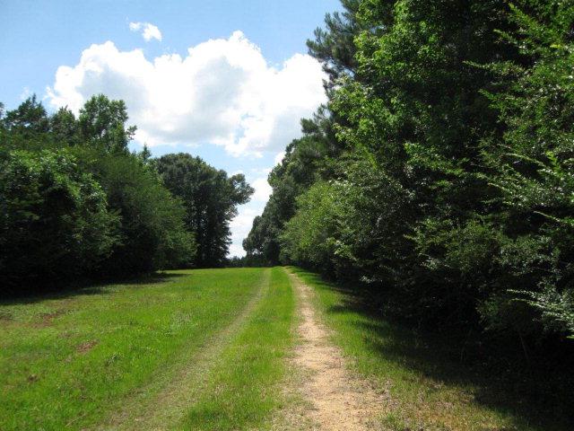 000 Vaniel Holmes Rd, Tylertown, MS 39667