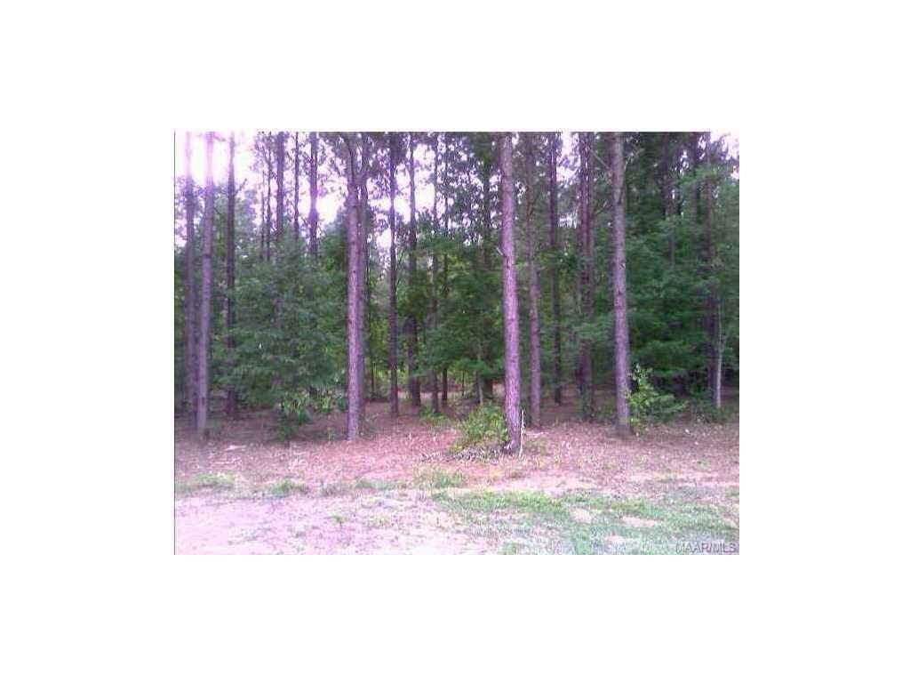 7 PLANTATION Trail, Mathews, AL 36052