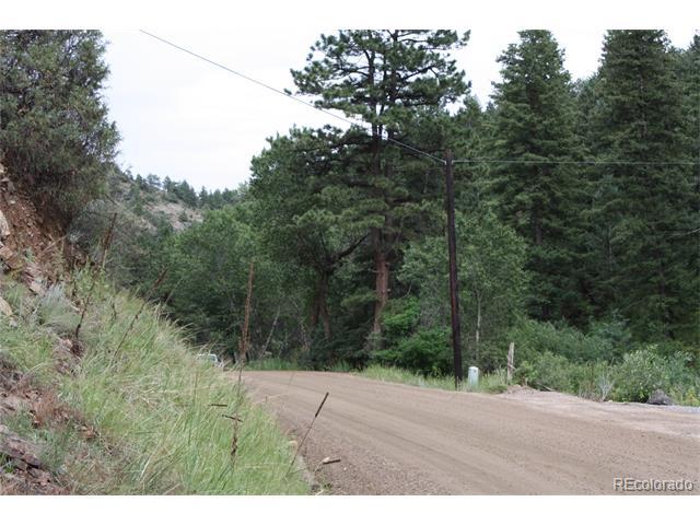 603 S Spring Gulch Road, Idaho Springs, CO 80452