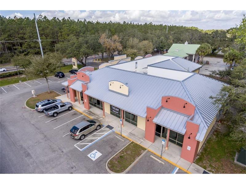 17759 GUNN HIGHWAY, ODESSA, FL 33556