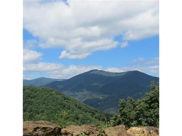 00 Tawodi Trail Trail, Maggie Valley, NC 28751