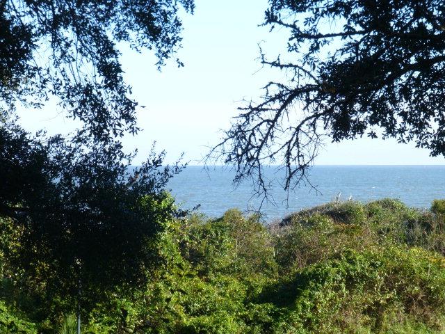 1175 N Beachview Dr., #290 290, Jekyll Island, GA 31527