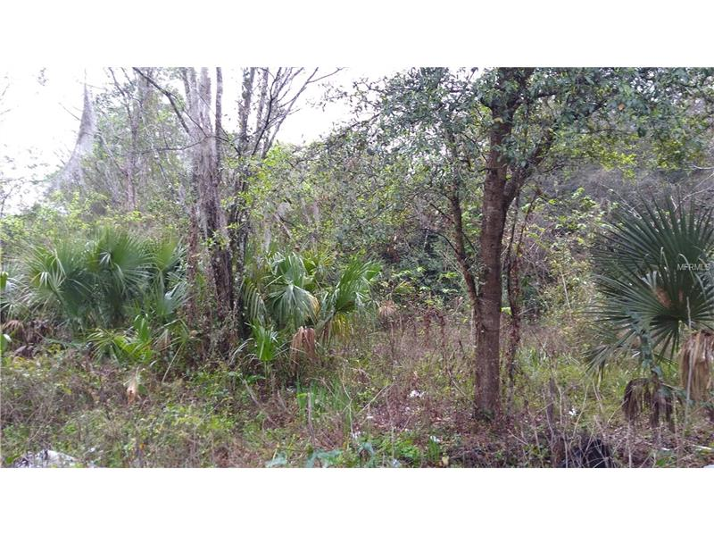 5002 W WARM SPRINGS AVENUE, COLEMAN, FL 33521
