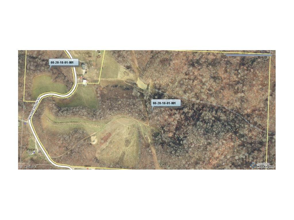 Fattler Ridge, Sealover Hollow Rd, Philo, OH 43771