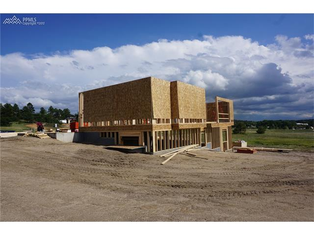607 Pioneer Haven Point, Palmer Lake, CO 80133