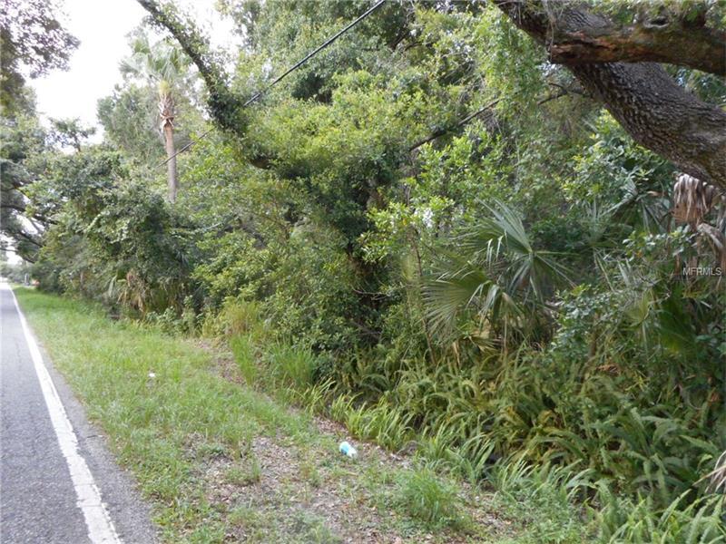WILLIAMS ROAD, BRANDON, FL 33510