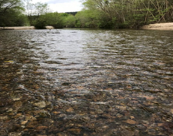 167a Low Water Bridge Rd, Meadville, MS 39653