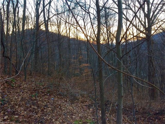 67 Chautauqua Ridge 3, Barnardsville, NC 28709