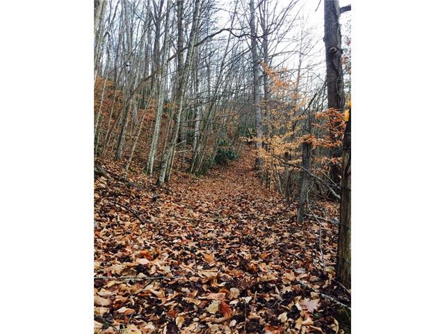 19 Chautauqua Ridge 1, Barnardsville, NC 28709
