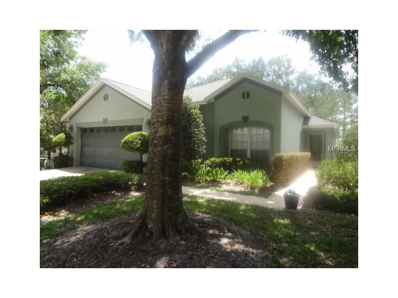 6028 SPRING CREEK COURT, MOUNT DORA, FL 32757