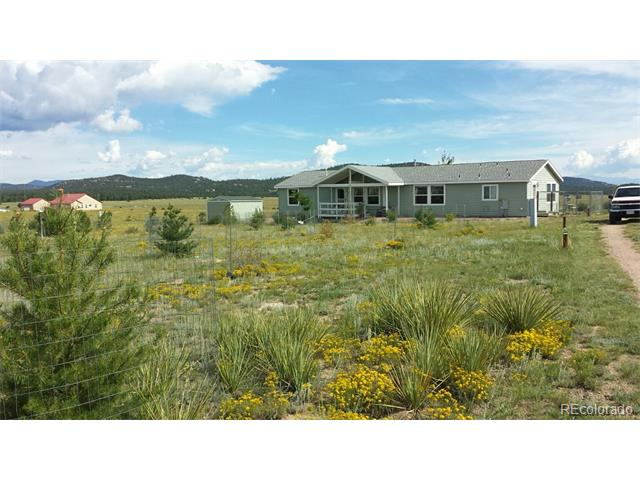 241 Gibbons Trail Way 620, Cotopaxi, CO 81223