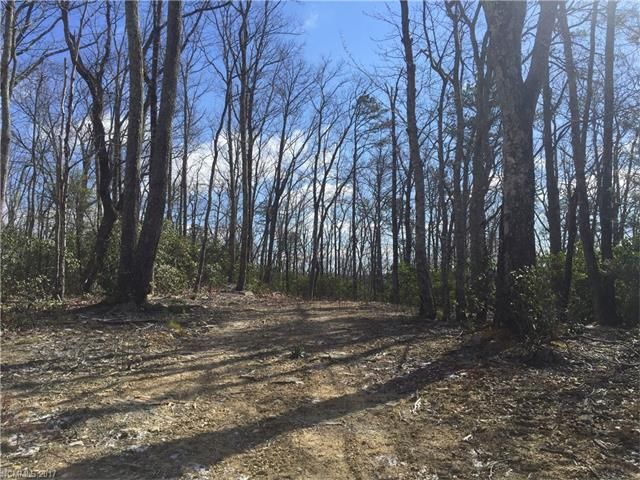 Lace Falls is a well maintained/ well planned community in the Edneyville area. LOT# 65 is a premium lot, with level driveway access and fantastic mountain views possible w/ some tree removal/ topping. Private country feel but only 15 minutes to 4 Seasons Blvd.