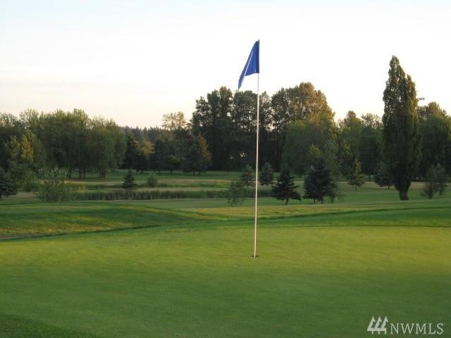 153 Newaukum Golf Dr, Chehalis, WA 98532