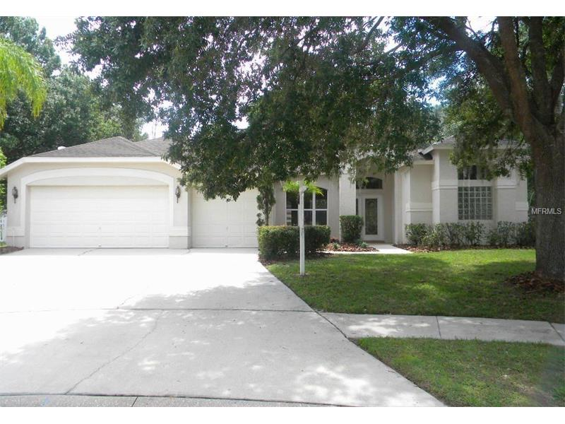 4013 CANTER COURT, VALRICO, FL 33596