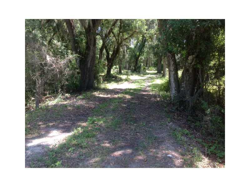 PINE LEVEL ROAD, WAUCHULA, FL 33865