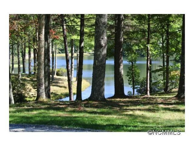 TBD Stones Lake Road S 2 L, Cedar Mountain, NC 28718
