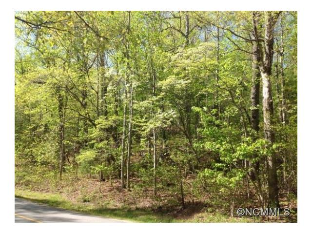 Gentle easy build corner lot with holly & dogwood trees in Kenmure Golf and Country Club.  Not too far from the gate. Across from Rail Pin Park, assessed value is 95,200.  3 Bedroom septic permit - expired