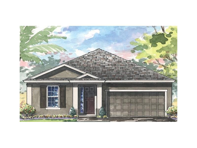 4224 CRAYFORD COURT, LAND O LAKES, FL 34638
