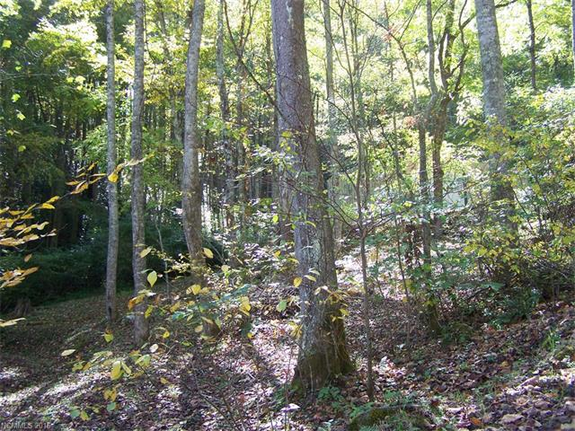 725 Jess Cove Road, Clyde, NC 28721