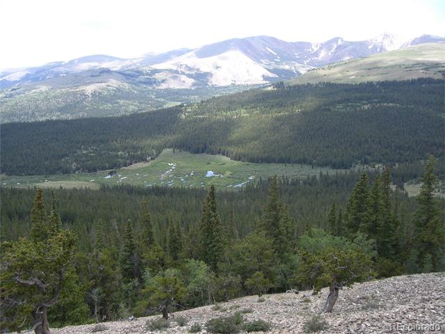 Breakneck Pass Road, Fairplay, CO 80440