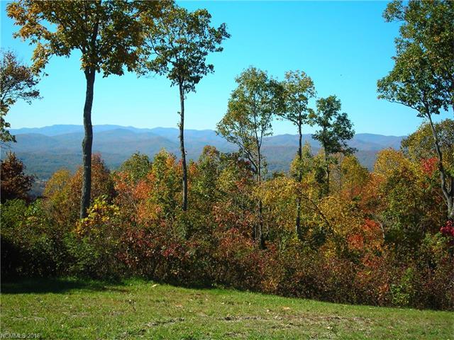 33 Cummings Ridge Trail #17, Hendersonville, NC 28739