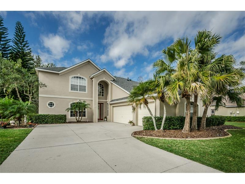 18912 SAINT LAURENT DRIVE, LUTZ, FL 33558