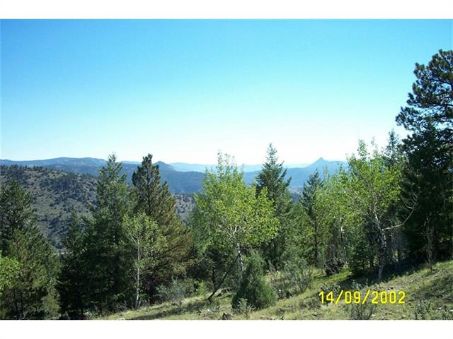 14714 WETTERHORN PEAK Trail, Pine, CO 80470