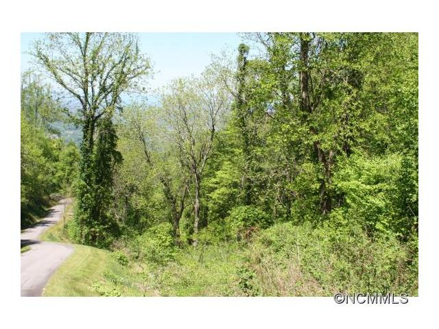 100 Cave Summit Trail 100, Leicester, NC 28748