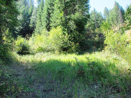 TBD S Hwy 95, New Meadows, ID 83654