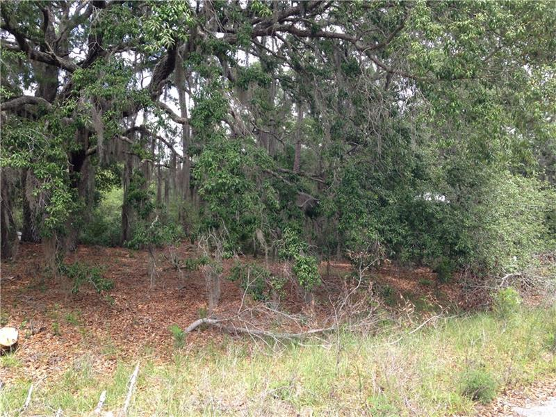 FISHER WAY DRIVE, WEIRSDALE, FL 32195