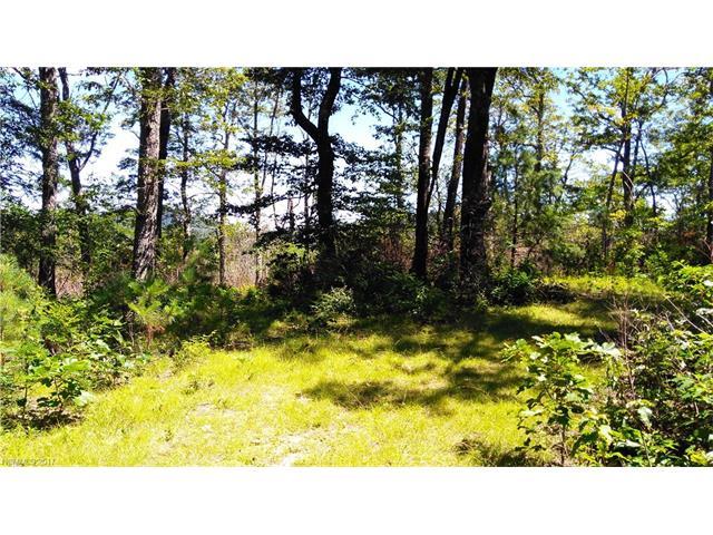 99999 Pumpkin Patch Road, Black Mountain, NC 28711