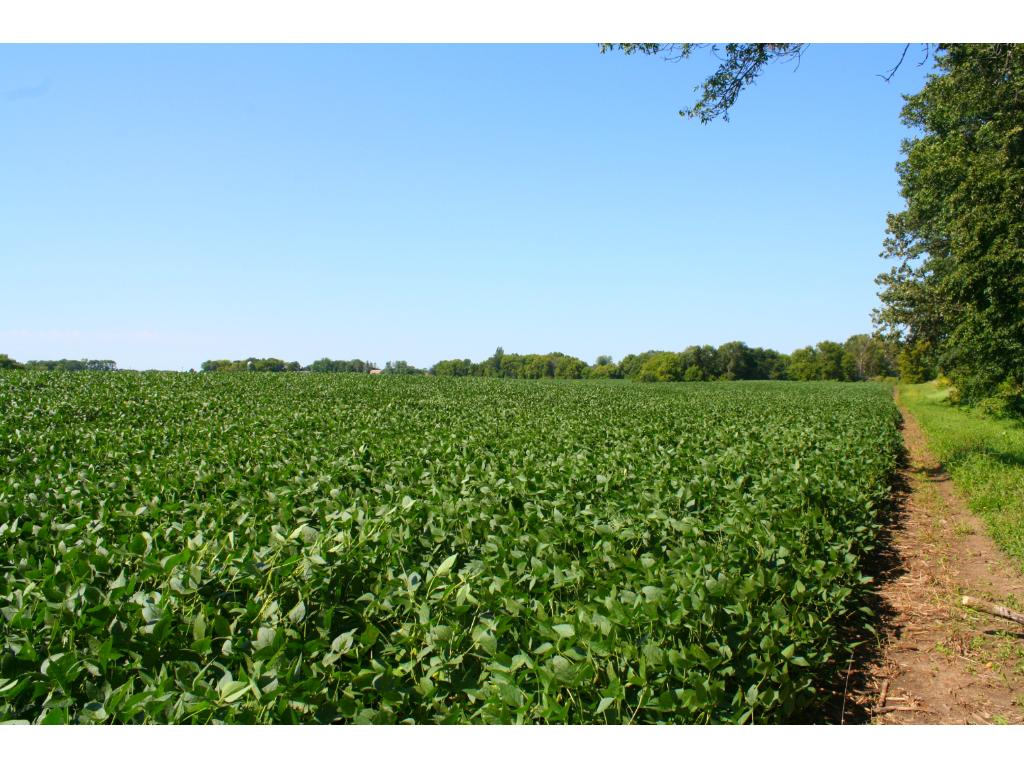 XXX Co Rd 9, Winsted, MN 55395