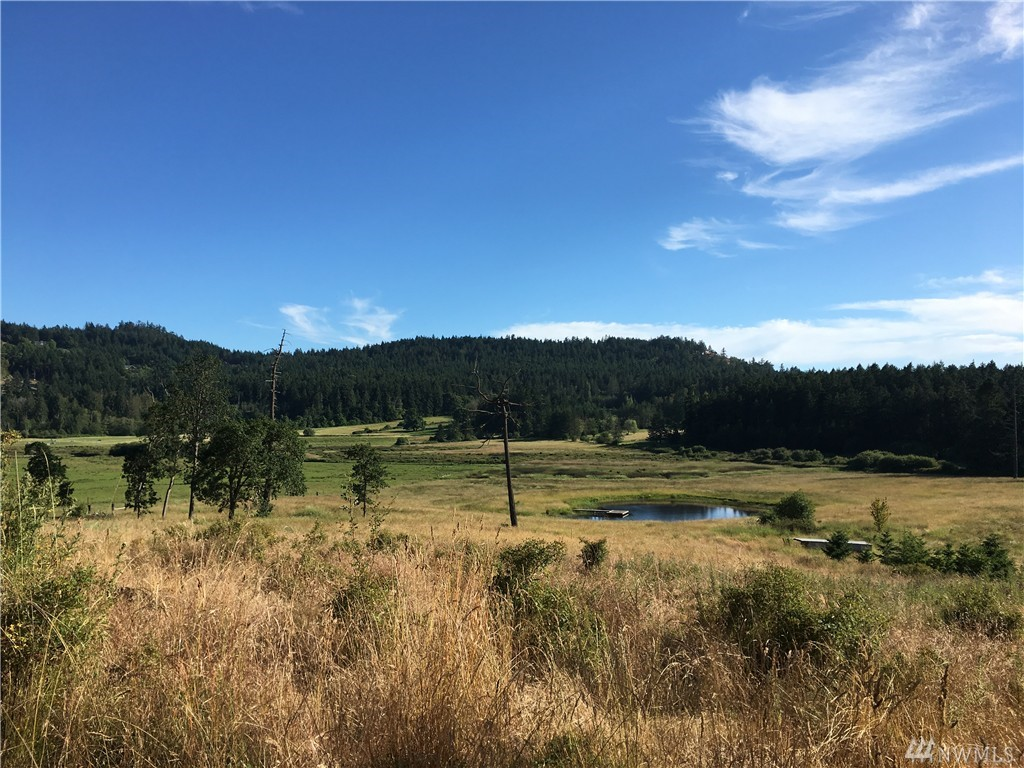 319 Red Fox Lane, San Juan Island, WA 98250