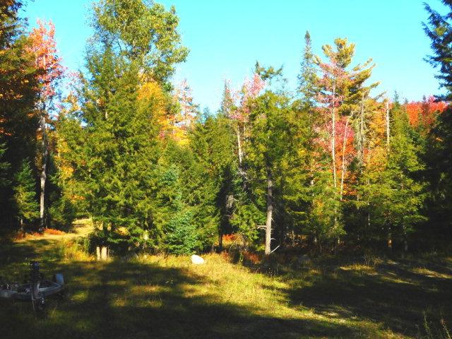 17 Jasper Trail, Inlet, NY 13360