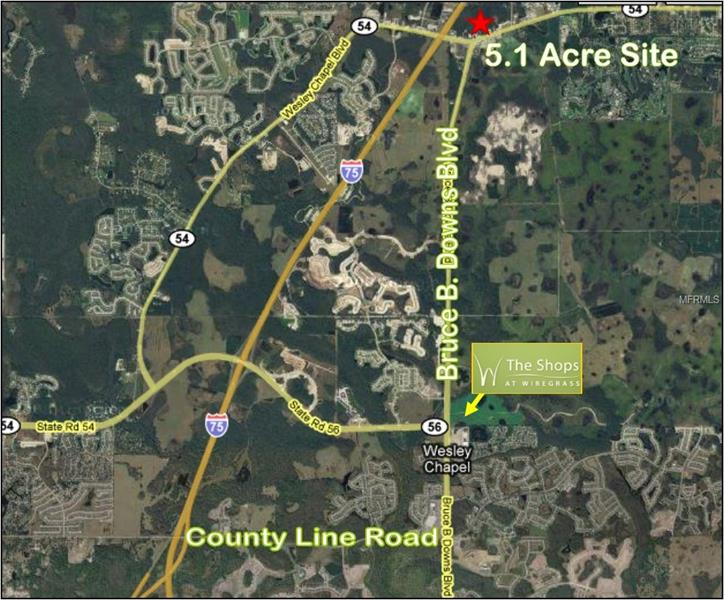 STATE ROAD 54, WESLEY CHAPEL, FL 33545