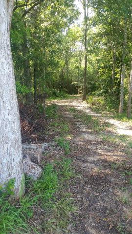 County Road 26, Foley, AL 36535
