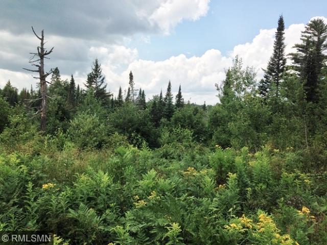 xx N. Branch Carroll Trail, Duluth, MN 55801