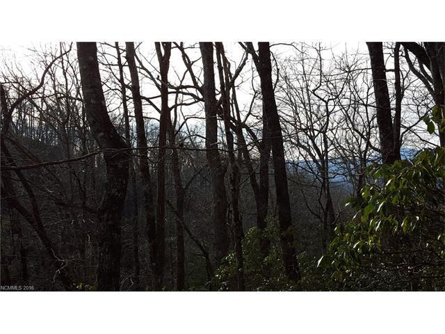 TBD Connestee Trail, Brevard, NC 28712
