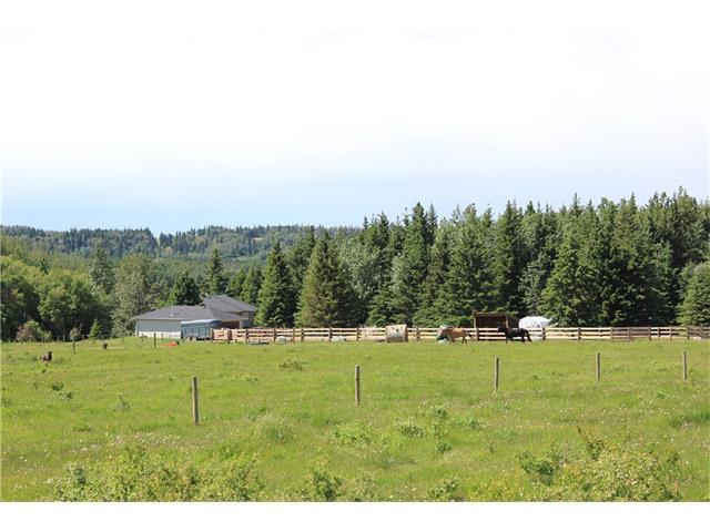 Range Road 43 33480, Rural Mountain View County, AB T0M 1X0