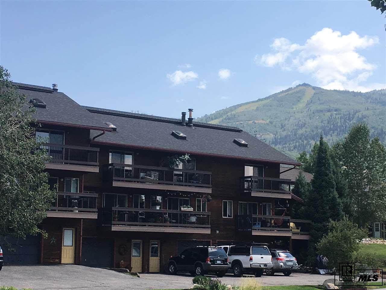 1360 Skyview Ln Unit 2, Steamboat Springs, CO 80487