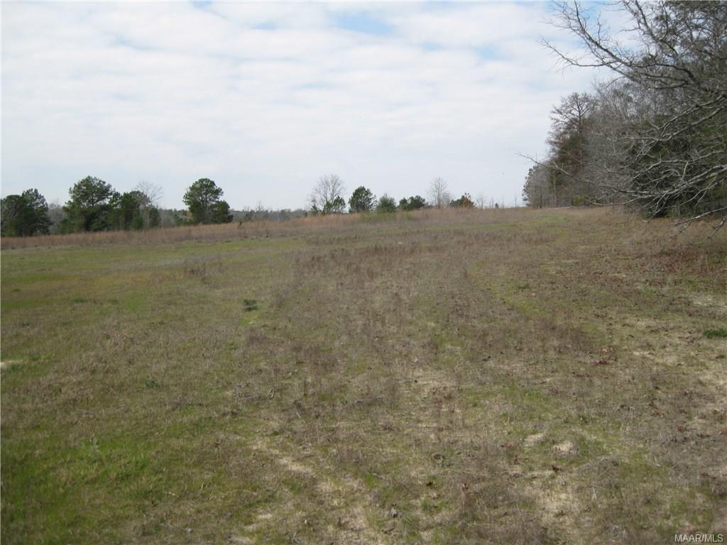 2204 County Road 48 Road, Tuskegee, AL 36083