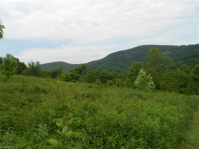 Enjoy breathtaking views and unspoiled beauty and wildlife from this easy built .89 acre lot. Country setting in an area of beautiful homes. This lot is mostly cleared. Build on this lot and you may never want to leave home!