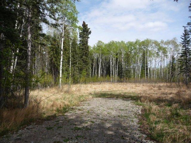 Lot 11 Little Red Acres, Rural Mountain View County, AB T0M 2E0